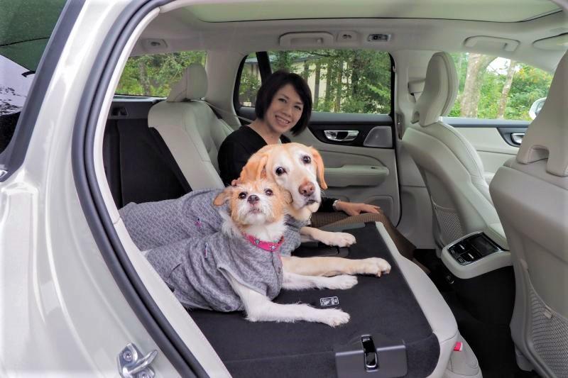 愛犬とのドライブ旅行に最適なボルボのツーリングワゴン「V60 T8 PHV AWD」
