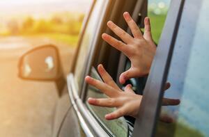 コロナ禍で窓開けの機会増加! 注意!! 大根も切り落とすパワーウィンドウの危険性