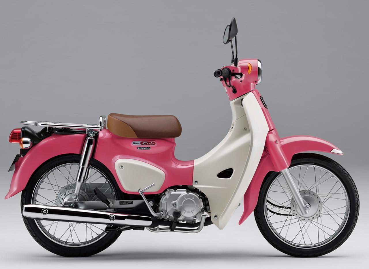 ホンダ「スーパーカブ110」【1分で読める 2021年に新車で購入可能なバイク紹介】