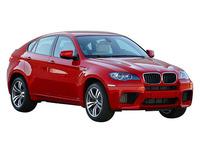 BMW X6 M 2012年6月〜モデルのカタログ画像