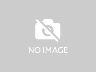 MG RV8 新型・現行モデル