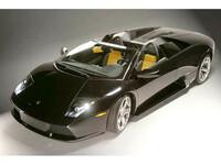 ランボルギーニ ムルシエラゴロードスター 2004年8月〜モデルのカタログ画像