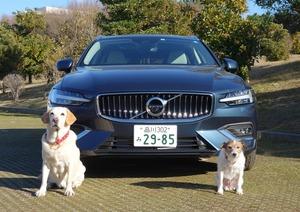 愛犬との旅行に最適な輸入車の条件とは? ワンコとの実証テストと数値で徹底分析