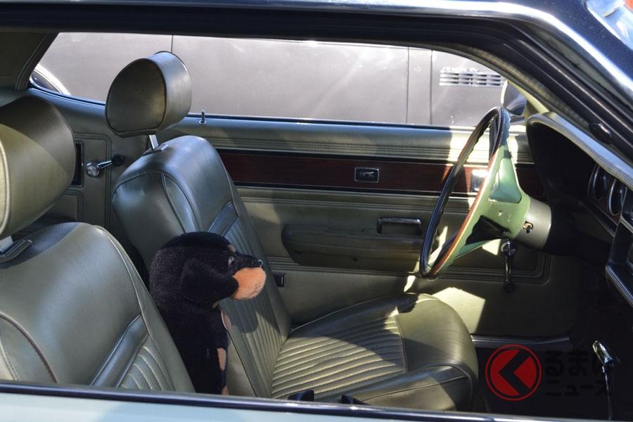 停電でペットと車中避難!? 安全に過ごすために気を付けたいこととは