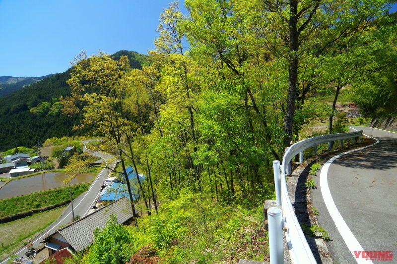 バイクで巡るニッポン絶景道:愛媛県道383号線・四国カルスト公園縦断線【生涯記憶に残る特上の絶景高原】