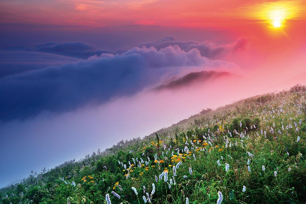 琵琶湖を渡る湿った風が山並みに当たって雲を生む(岐阜県 伊吹山ドライブウェイ)【雲海ドライブ&スポット Route 59】