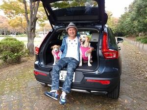 愛犬とのクルマでの移動にはドッグシートは必需品!汚れを防ぎ抜け毛を掃除しやすいのがポイント
