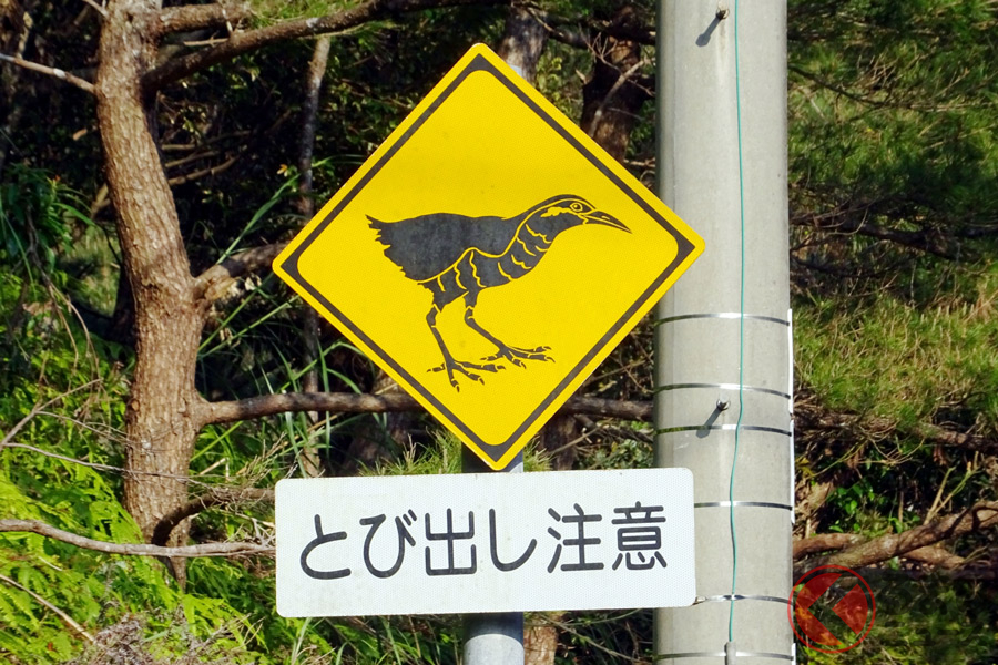 「何の意味?」あなたはいくつ分かる? ご当地特有の道路標識5選