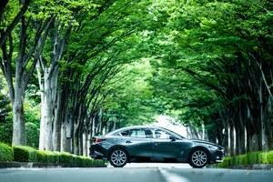 1980~1990年代の自動車の良さを再認識した2019年──今尾直樹とマツダ3など