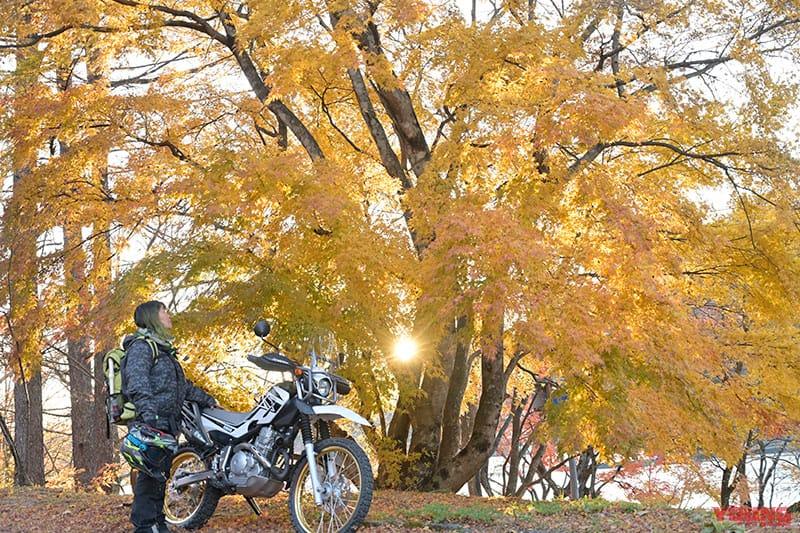 ガチンコバイク女子・コイの「野駆け・ぐるり林道はしごルート」榛名編