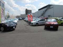 展示車両確保の為、車両買取も強化しておりますのでお車が不要になった方も是非ご相談ください!