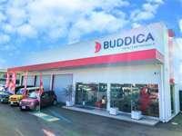中古車販売/業販専門店 BUDDICA ルート32号店