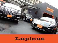 TOTAL CAR SHOP Lupinus null