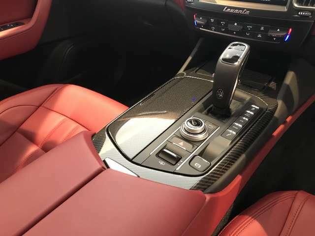 スポーティーな雰囲気のカーボンインテリアトリムをオプション装備