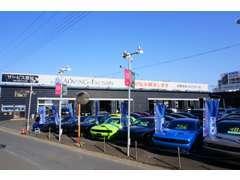 常時展示場には50台以上の在庫車が並んでおります。専門店としてここまでの台数を一度に見れるのもグライドの魅力です。