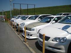 在庫車は常時20台以上!ワンオーナー車多数☆