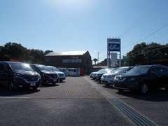 ◆常時150台以上展示中★色々なジャンルのお車を展示しております。ご来店お待ちしております。