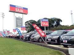 当店展示場には約80台の高品質車が勢揃い!