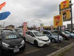 茨城日産自動車株式会社カーセブン牛久店です!国道6号線沿いの、黄色い看板が目印です♪