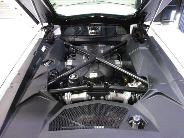 T型カーボンエンジンカバー(オプション)