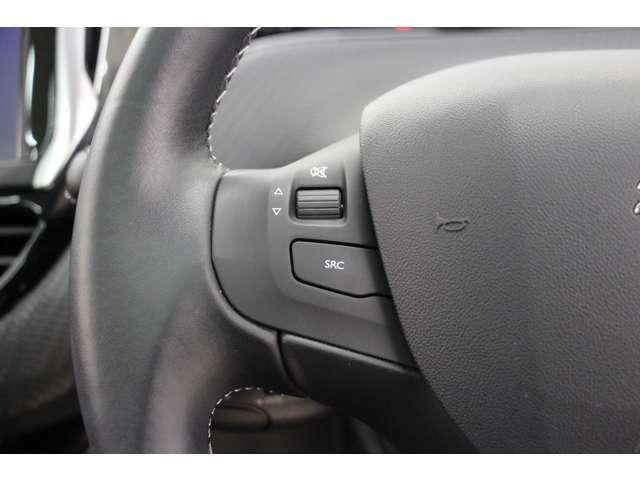 こちらのボタンでオーディオの音量調整が可能です。