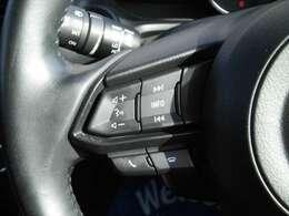 ステアリングスイッチで オーデイオ操作や平均燃費、瞬間燃費等の表示ができます