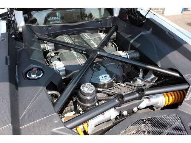 T型カーボンエンジンカバー装備!ガラスエンジンフードで、エンジン回りはオプション多数装備されております。