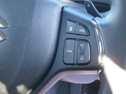 アダプティブクルーズコントロール(車間距離を保ち加速・減速します)
