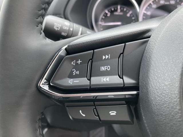 ◆ステアリングスイッチ【ナビなどの操作や音量調整が可能な便利なスイッチです。画面を注視しなくても操作が可能です。】