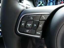 「ドライブプロパック」(85,000円)は、アダプティブクルーズコントロールがついていますので、前を走る車との車間距離を調整して安全なドライブをお手伝いします。