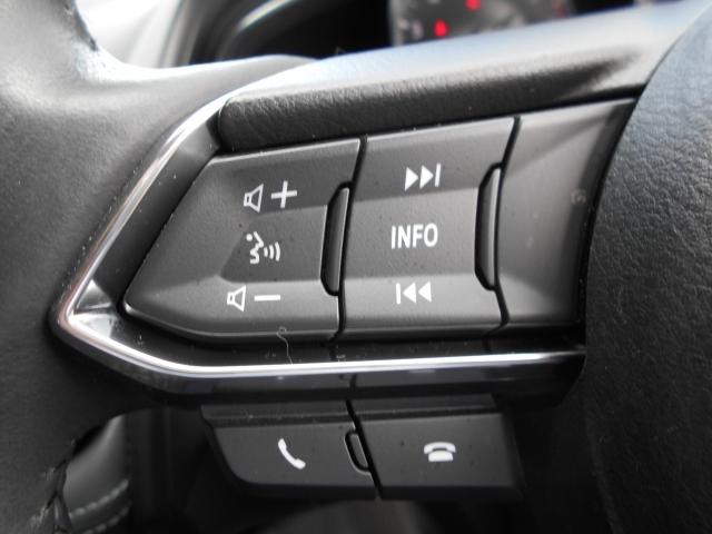 オーディオの選曲や音量調節、インフォメーションディスプレイの切り替えなどは、ステアリングに付いたリモコンスイッチで行えます!ステアリングから手を放さずに操作できるので安全に寄与します!