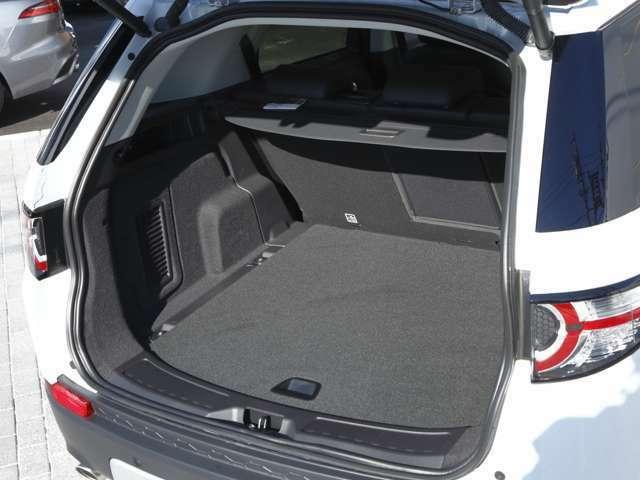 ハンズフリーテールゲートは車体の下にかざせば開けられます。