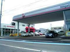 姉妹店フィアット/アルファロメオ新潟はシトロエン新潟隣。