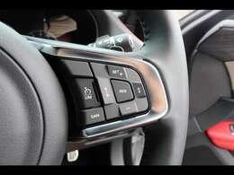 「アダプティブクルーズ」などの安全運転サポート機能もしっかり装備。高速道路や渋滞時に活躍してくれます。