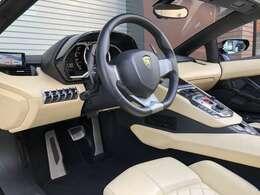 Interior carbon fiber package