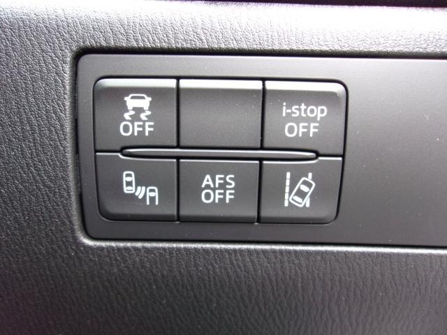 車線逸脱警報装置やブラインドスポットモニタリングなど安全装置も抜かりなし!