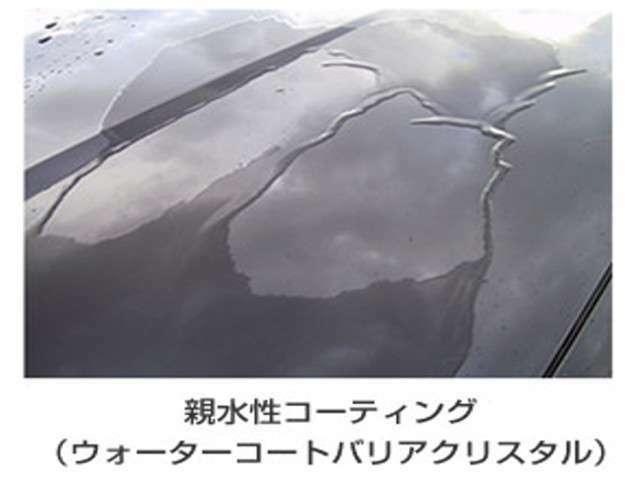 オプションセットのボディガラスコート☆汚れも落ちやすく洗車も楽々です☆