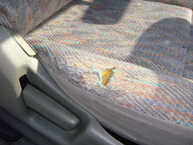 フロントシートに切れやへたりがあります。