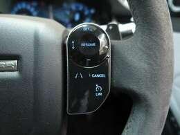 ドライブパック(メーカーオプション¥113,000)「アダプティブクルーズコントロール(ストップ&ゴー付)・ブラインドスポットアシスト・ハイスピードエマージェンシーブレーキ」