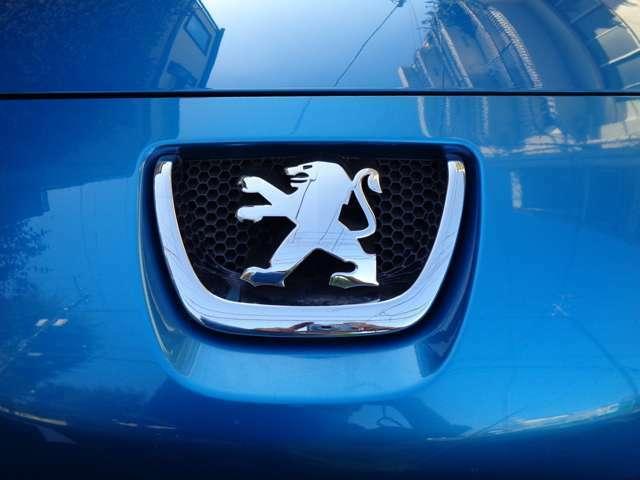 ノーズデザイン先端のプジョーエンブレムはクロームにグリルも輝きフォグ・ヘッド共にフレンチスタイル。クリアーで綺麗な状態をキープされたフロントヘッドライトが独創的なフレンチデザインの最終型207スタイル