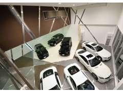 外観と同じラインデザインで統一された店内。雨の日でも夜間でもじっくりとお車をご覧いただける全天候型ショールームです。