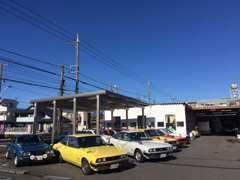 日々、素晴らしいいすゞの名車たちが、当店を訪れております・・