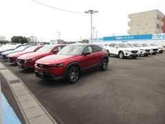 話題のお車やマツダ車以外も多数展示。下取り車、試乗車卸し、ワンオーナー車メインの品揃え。