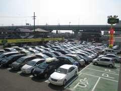 写真に納まらないこの広さ!写真右奥にもお車が置いてあります!常時100台以上の展示場です♪お探しのお車がきっとありますよ☆