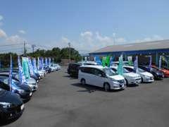 広々とした展示スペースには、軽からセダン、ミニバン、RVまで常時約40台を展示。トヨタ車以外も取り扱っております。