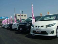 広々とした展示スペースには、セダン、ミニバン、RVまで約40台を展示。トヨタ車以外も取り扱っております!