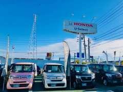 展示車両は、試乗車アップはじめ、安心の自社下取車両、他メーカーのお車もご用意しております。