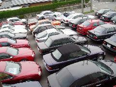 展示場にはイタリア車を中心にBMWやアルピナなど豊富なラインナップで常時在庫60台以上展示しています