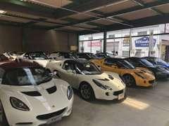 ロータス名古屋西認定中古車展示場には、ざまざまなモデルを豊富に展示! ご試乗もできますよ!