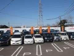 展示場には常時30台以上の上質なホンダ車を揃えております!